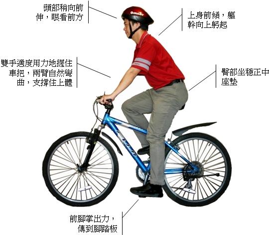 正確騎單車的姿勢